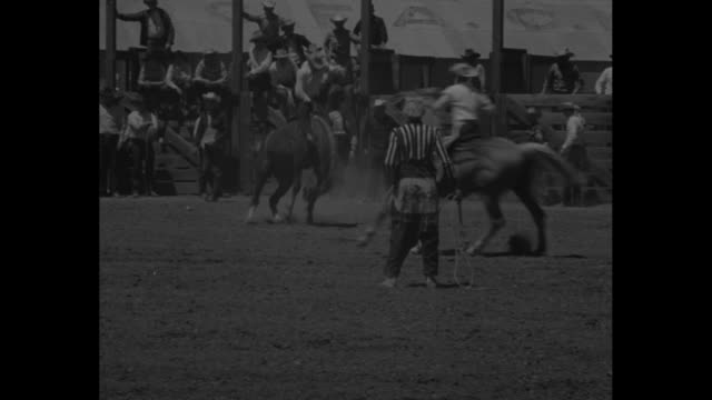 VS cowboys ride bucking broncos tossed / cowboys open gate and rider is tossed as soon as out of gate / cowboys sit atop fence watching / riders...