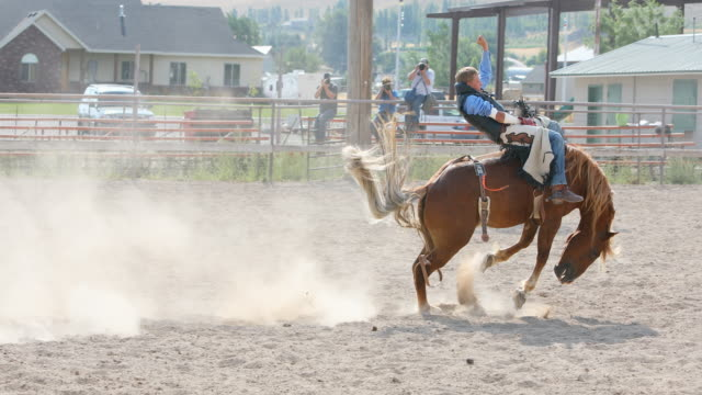 cowboys riding bucking broncos at a rodeo - rodeo stock videos & royalty-free footage