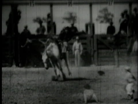 1939 montage cowboys riding bucking broncos in rodeo / united states - medium group of animals stock videos & royalty-free footage