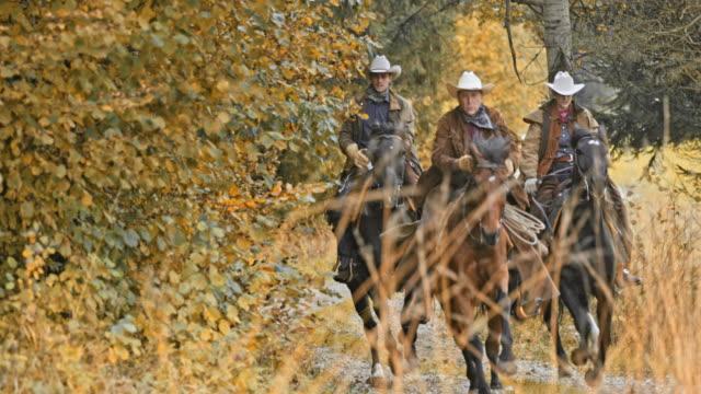 SLO-MO-TU-Cowboys reiten galoppierende Pferden auf Landstraße