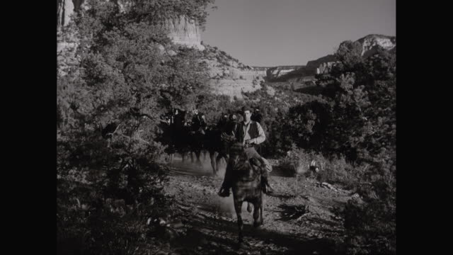 ws ha cowboys riding horses and horsecart on dirt track / united states - cowboy stock videos and b-roll footage