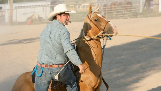 Roping Ochsen bei einem Rodeo Cowboys