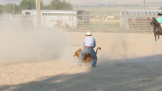 cowboys roping steers at a rodeo - rodeo stock videos & royalty-free footage