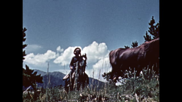 cowboys/cowgirls ride across a hill in montana. - カウボーイ点の映像素材/bロール