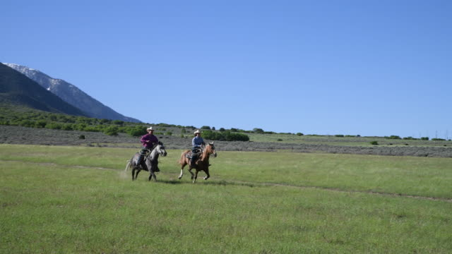 cowgirl and cowboy riding horses across rural grassland - plain stock videos & royalty-free footage