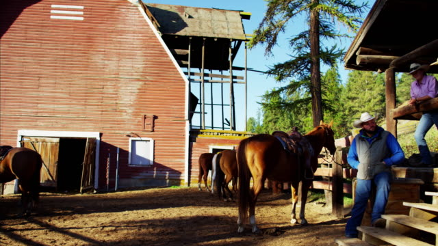 Cowgirl and Cowboys relaxing on horse Ranch America