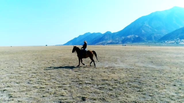 cowgirl in open pasture. - all horse riding stock videos and b-roll footage