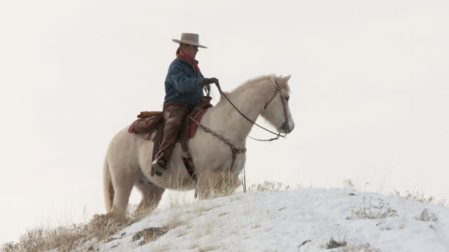 la cowgirl on a horse standing on snowy hilltop looking around / shell, wyoming, united states - newoutdoors stock videos & royalty-free footage