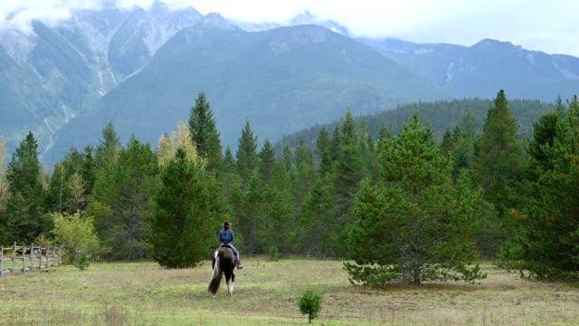 cowgirl riding her horse at a ranch - rancher stock videos & royalty-free footage