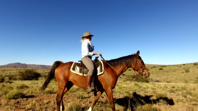 cowgirl riding her horse - the karoo stock videos & royalty-free footage