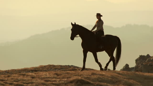 hd: cowgirl riding horse at dusk - recreational horseback riding stock videos and b-roll footage