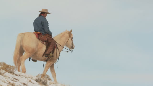 slo mo ws la pan cowgirl riding horse on snowy ridge / shell, wyoming, usa - 中年の女性一人点の映像素材/bロール