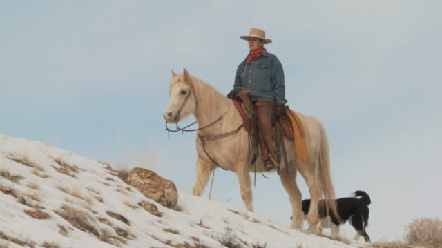 stockvideo's en b-roll-footage met slo mo ws la pan cowgirl riding horse on snowy ridge with dog / shell, wyoming, usa - alleen oudere vrouwen