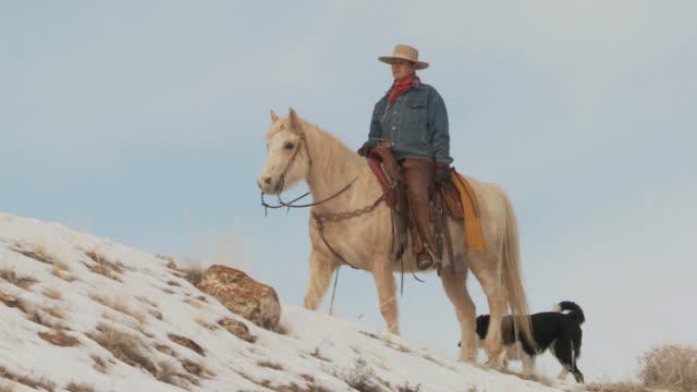 slo mo ws la pan cowgirl riding horse on snowy ridge with dog / shell, wyoming, usa - 中年の女性一人点の映像素材/bロール