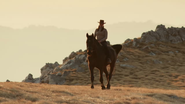 hd: cowgirl riding through the prairie - recreational horseback riding stock videos and b-roll footage