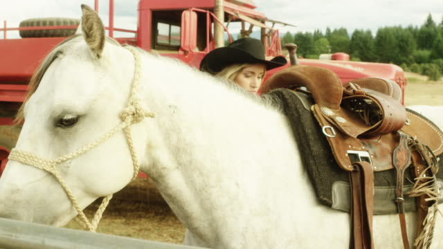 cowgirl saddles up her horse - saddle stock videos & royalty-free footage