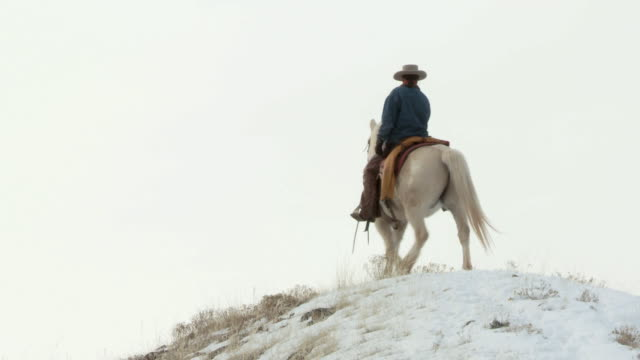 la cowgirl walking horse slowly around on snowy hilltop / shell, wyoming, united states - newoutdoors stock videos & royalty-free footage
