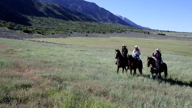 vídeos y material grabado en eventos de stock de paseo a caballo de vaqueras en el país - sólo mujeres jóvenes