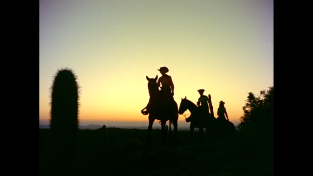 WS Cowgirls riding horses in field during sunset / United States