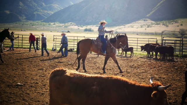 Cowgirls mit Lasso auf der ranch