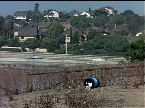 vídeos y material grabado en eventos de stock de a coyote seems wary as it skirts an overturned trash barrel. - hurgar en la basura