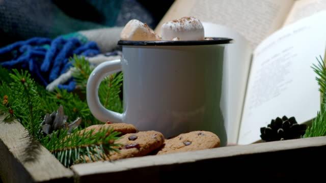 冬の居心地の良い読書 - winter点の映像素材/bロール