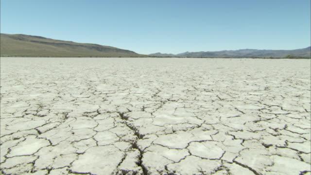 Cracked desert sand