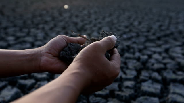 cracked dry soil, arid area in thailand - climate research stock videos & royalty-free footage