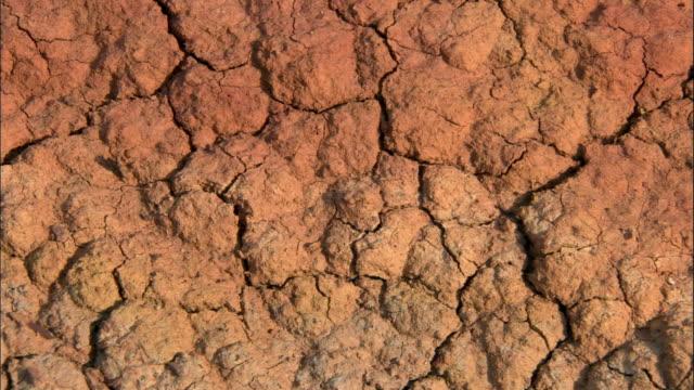 cracked earth, kalamaili nature reserve, xinjiang, china - dry stock videos & royalty-free footage