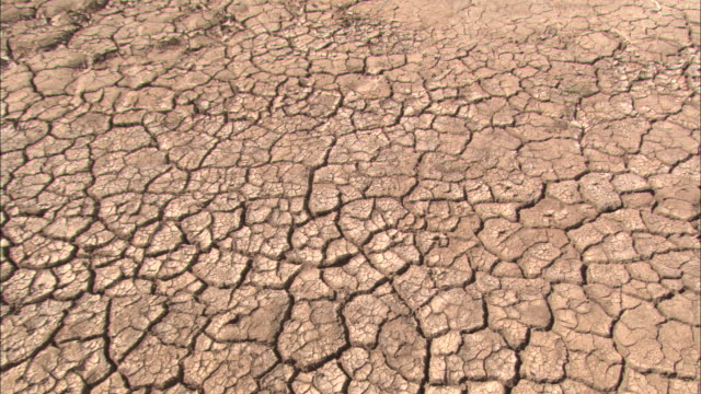 cracked earth shows the effects of drought. - baja california peninsula stock videos & royalty-free footage