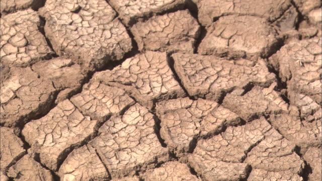cracked earth shows the effects of drought. - バハカリフォルニア点の映像素材/bロール
