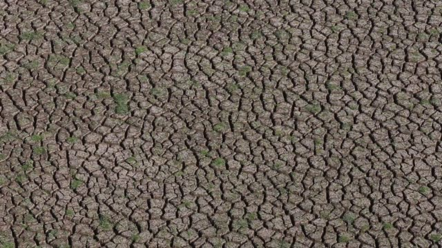 cracked earth sits at the bottom of the driedup manjara dam near latur maharashtra india on saturday april 16 a scale measures the water level of the... - maharashtra stock-videos und b-roll-filmmaterial