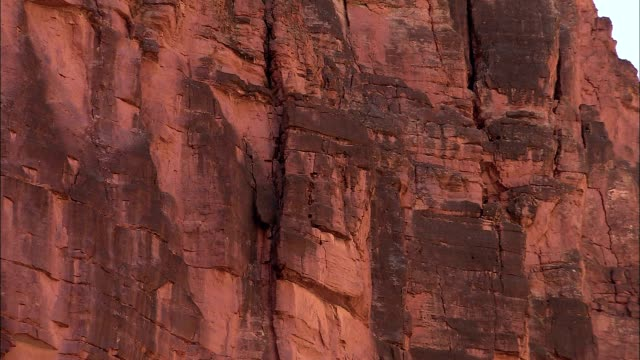 cracks cover sheer sandstone cliffs in the grand canyon. - sandstone stock videos & royalty-free footage
