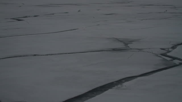 cu cracks in the ice and ice shelf is revealed - antarctica sunset stock videos & royalty-free footage