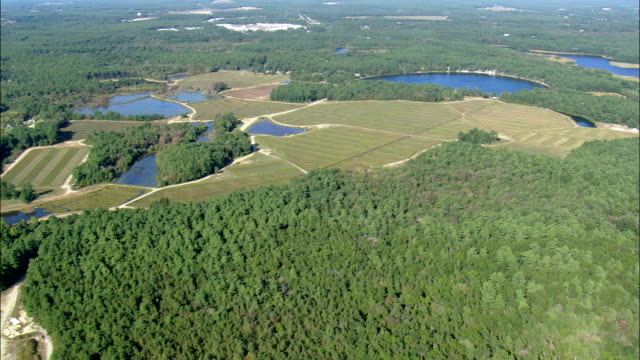 cranberry fields  - aerial view - massachusetts,  plymouth county,  united states - cranberry stock videos & royalty-free footage