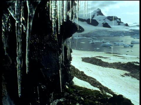 vídeos de stock, filmes e b-roll de crane down past icicles dripping and melting in antarctic springtime - neve derretida