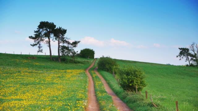 Crane Down: Frühling Landschaft