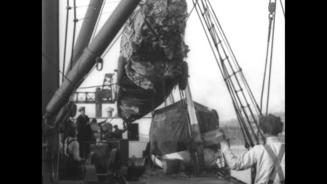 crane hoisting packaged fuselage of plane / fuselage being eased over deck / various shots fuselage being lowered onto deck / crane moving packaged... - hoisting stock videos & royalty-free footage