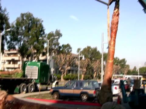 crane lifting / moving palm tree - mindre än 10 sekunder bildbanksvideor och videomaterial från bakom kulisserna