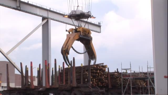 A crane reaches down to grasp logs.