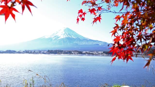 crane shot fujisan in koyo autumn at kawaguchiko lake yamanashi japan - maple stock videos & royalty-free footage