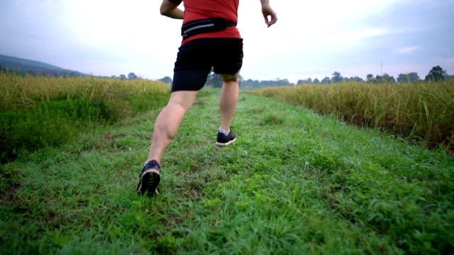 Kran-Shot der Rückseite Läufer laufen im Reisfeld in Zeitlupe