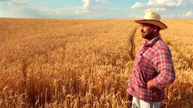 Crane Shot del contadino In piedi In un campo di grano