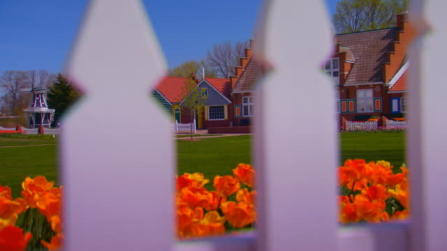 crane shot of tulips to windmill island - picket fence stock videos and b-roll footage