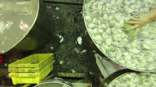crane shot over a man stirring a large vat of fish pieces at a fish market in ho chi minh city. - crane shot stock videos & royalty-free footage