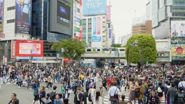 crane slow motion video of shibuya crossing intersection crowd - japanese school uniform stock videos & royalty-free footage