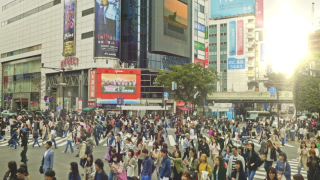 crane video of shibuya crossing intersection crowd at sunset - giappone video stock e b–roll