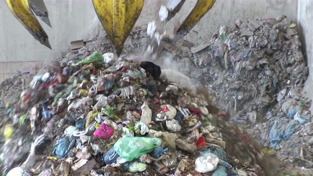 ms  crane working in garbage drying plant / mertesdort, rhineland-palatinate, germany - 建設機械点の映像素材/bロール
