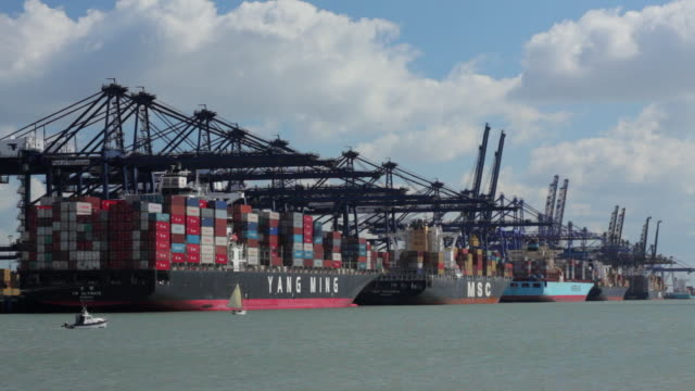ws cranes and container ships at felixstowe dockside / felixstowe, suffolk, uk - scrittura occidentale video stock e b–roll