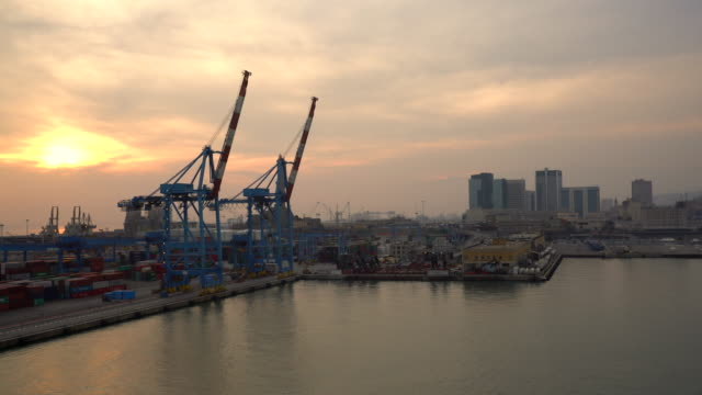 ws cranes in harbor of genoa at sunset - pier video stock e b–roll